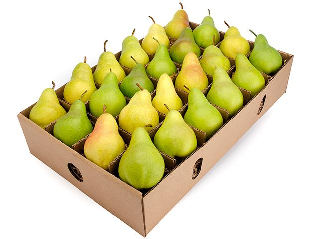 FruitShare - Seasonal Fruit Gifts - Organic Pears - Fall Fruit - Full Share