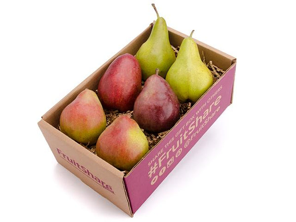 Pear gift- beautiful Holiday gift-organic fruit delivery