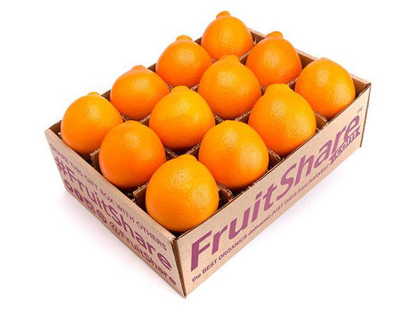Honeybell minneola 12 ct - In Season winter fruit- fruitshare