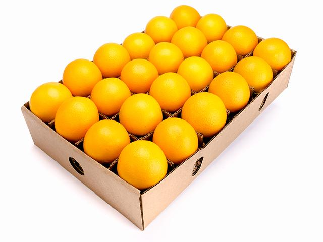 Navel orange 24 ct - Organic fruit gift - delivery -Fruitshare