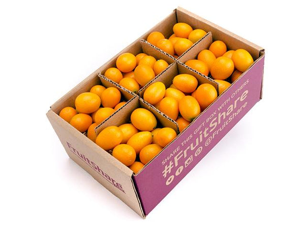 Kumquats - Fruit Gift -Organic Fruit Delivery- FruitShare