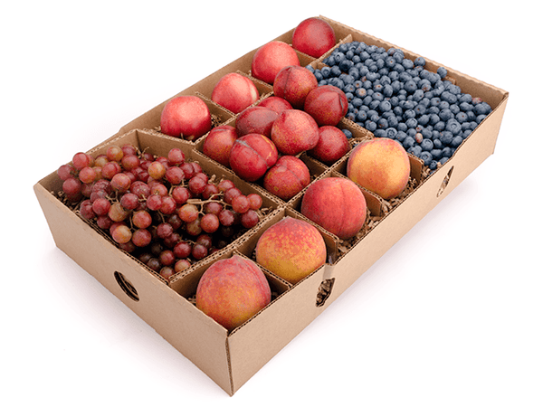 ruitShare™ farm fresh fruit club - organic fruit - full share - summer fruit - blueberries