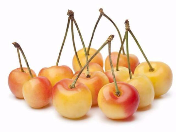 Cherries - organic- Rainier - fruit delivery- FruitShare