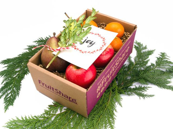 In season fresh fruit gift- Holiday Christmas gift- FruitShare