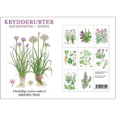 Notecards - Herbs Card Folder w/8 Note Cards