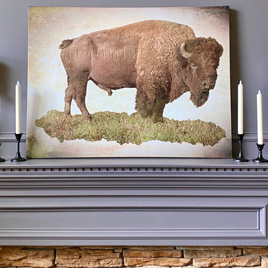 Vintage Bison with Tulsa Skyline 30x40 Canvas Wrap