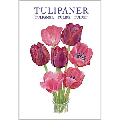 Notecards - Tulips Card Folder w/8 Note Cards