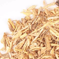 Angelica Root -1 lb