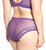 Sculptresse by Panache Plus-Size Flirtini Midi Brief Panty (7682)