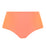 Elomi Amazonia Classic Swim Brief (ES7166)