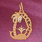 14K GOLD TRAVEL CHARM  - HAWAII #4974