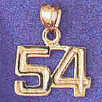 14K GOLD NUMERAL CHARM - 54 #9511