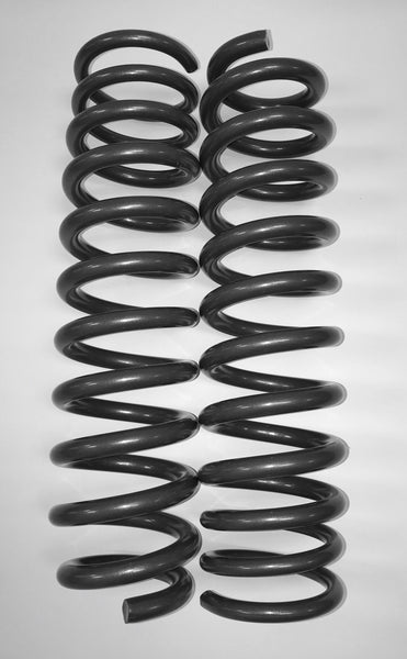 Geiser Progressive Rate Springs - 2017-2019 Raptor