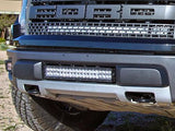 Rigid Industries 20 Inch Light and Mount - 2010-2014 SVT Raptor