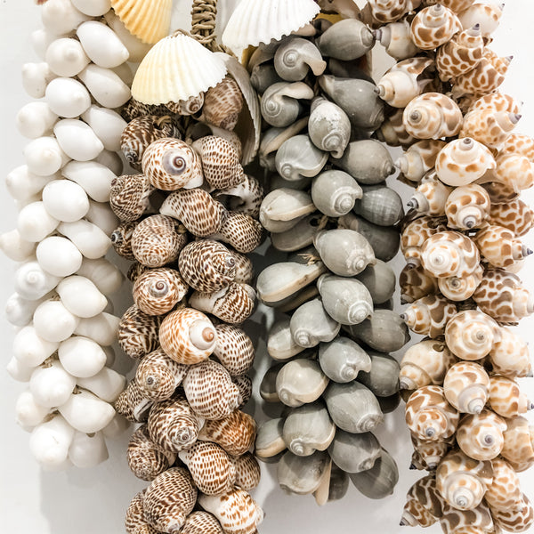 Shell Tassels Set of 4