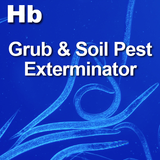 Beneficial Nematodes H. bacteriophora - Comes in units of 5, 10, 50 and 250 million insects