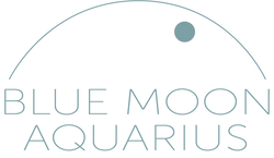 blue moon aquarius
