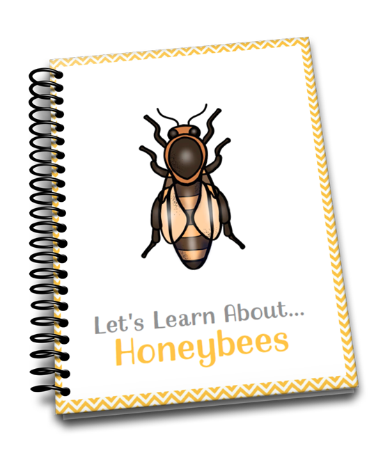 Let's Learn About Bees