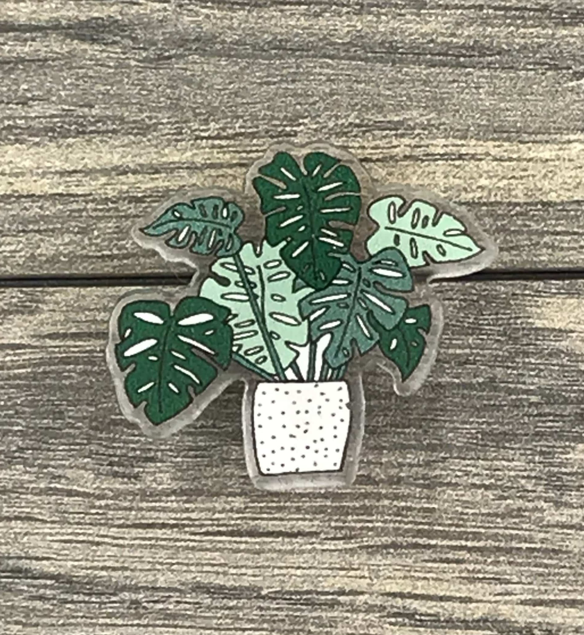 The Plant Farm Fun Stuff Monstera Pin