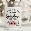 Promoted to Grandma 2018 11oz 15oz Coffee Mug