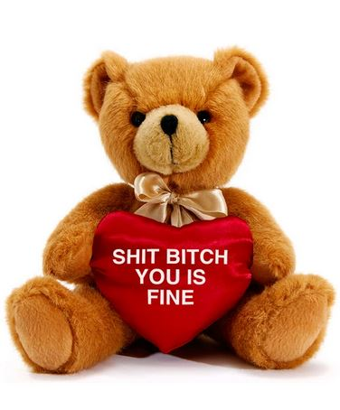 Bitch you is fine Teddy Bear