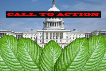 Kratom Call To Action! Kratom Is Under Heavy Attack!