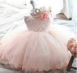 1 Princess Dress For Infants and Toddlers