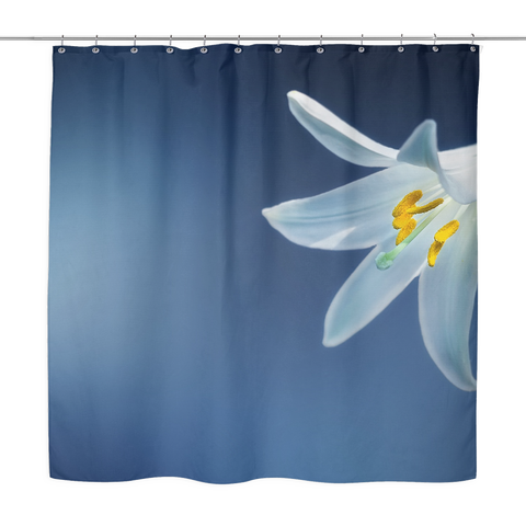Beauty Against The Sky Shower Curtain