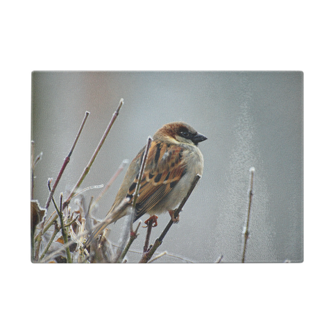 Sparrow On A Branch Glass Cutting Board