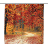 Pathway In The Fall Shower Curtain