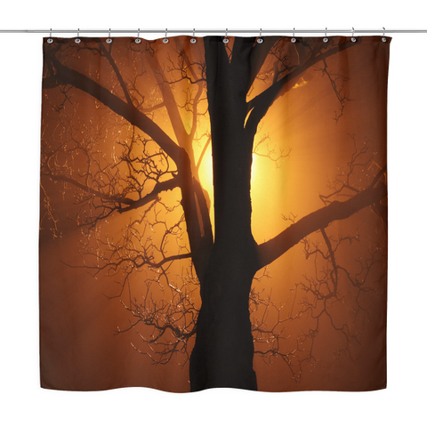 Barren Tree At Dusk Shower Curtain