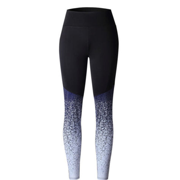 Women's Graduating Color Leggings