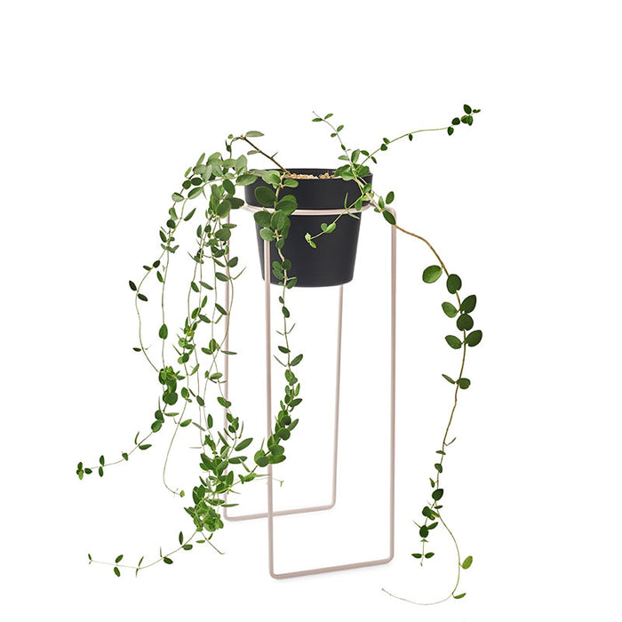 BENDO - PLANT TALL - POT STAND - BLUSH