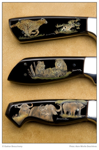 scrimshaw on water buffalo horn of African big game animals