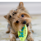Lil Barks Rope Football Dog Toy and dog