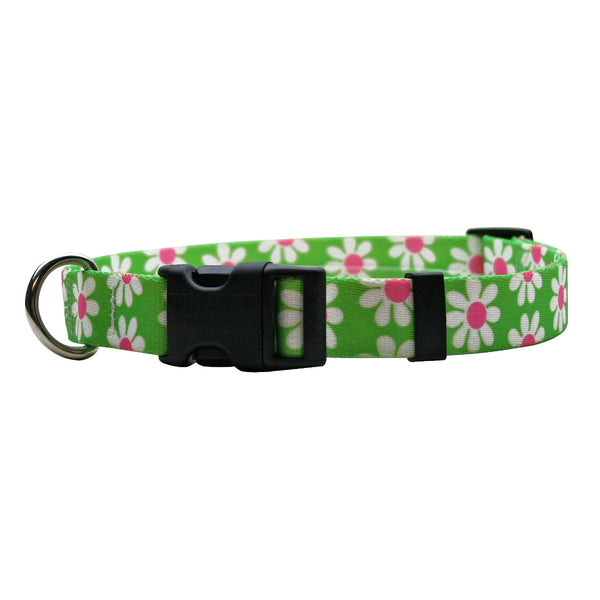 Green Daisy Nylon Dog Collar
