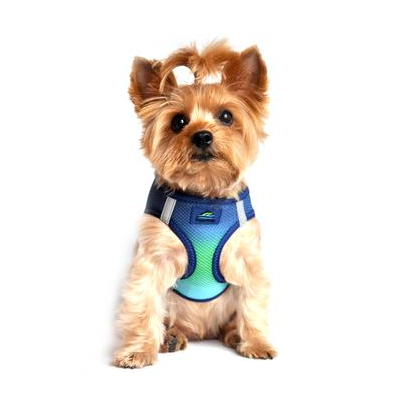 American River Dog Harness - Northern Lights