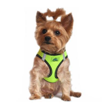 American River Dog Harness - Irridescent Green
