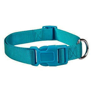 Teal Blue Adjustable Nylon Dog Collar