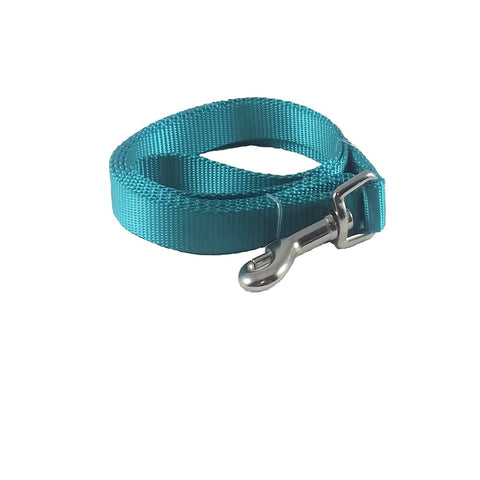 Teal Blue Nylon Dog Leash