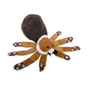 Huge Brown Spider Plush Dog Toy