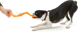 Būmi® Tug Dog Toy - Large