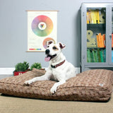 Daysleeper Refillable Dog Bed with dog