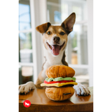 Dog with Classic American Burger Plush Dog Toy
