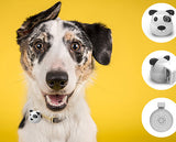 G.O.A.T Bluetooth Pet Speaker - SPOT on dog