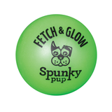 Fetch and Glow Ball Dog Toy - Green