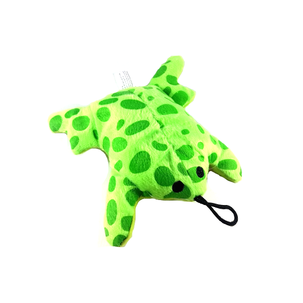 Soft Plush Green Frog Dog Toy