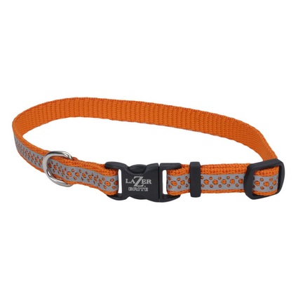 Lazer Brite Reflective Dog Collar - Orange