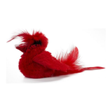"Play and Squeak ""RealBirds"" Cardinal Cat Toy"