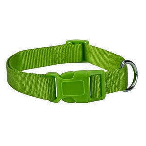Parrot Green Nylon Adjustable Dog Collar